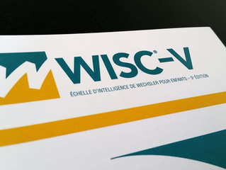 Nouvelle échelle d'intelligence de Wechsler