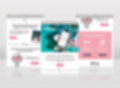 Web-portfolio-2.png
