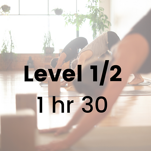 Level 1/2 with Jeanne - Saturday November 28
