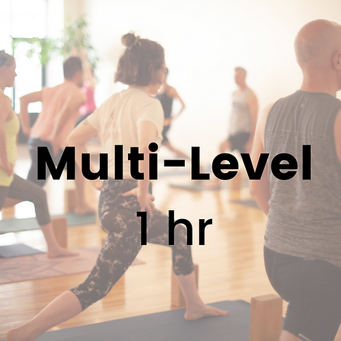 Multi-Level with Champa - Thursday December 17