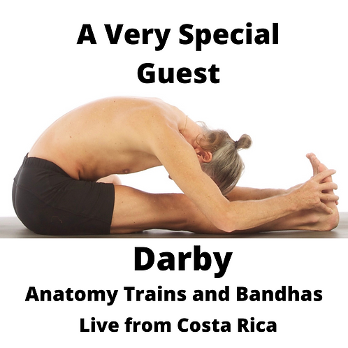 Darby: Anatomy Trains and Bandhas