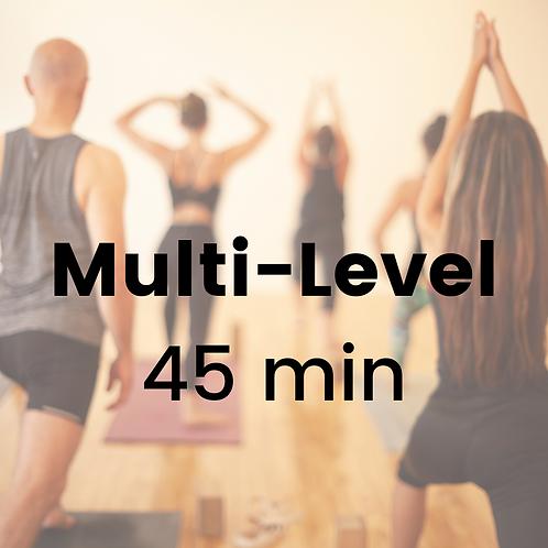 Multi-Level with Alex - Thursday January 14