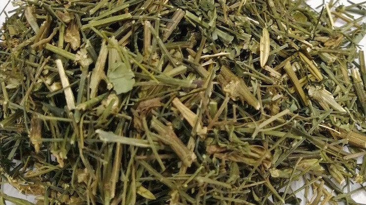 Green Chiretta (Bitter Grass) 穿心莲
