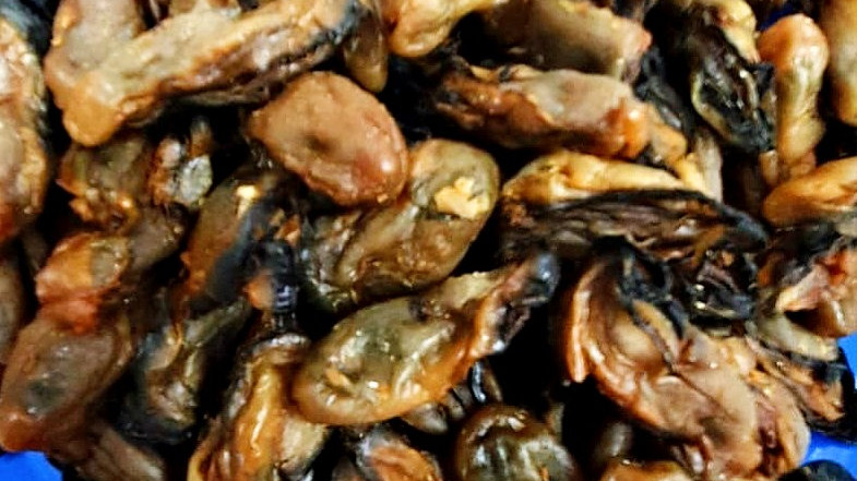 Oyster (Dried, size M) 蚝干 (大)