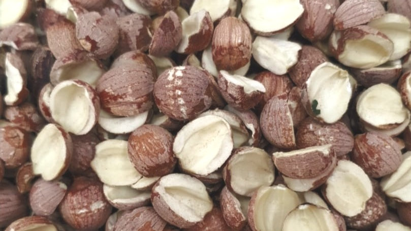 Dried Lotus Seed(开边莲子)
