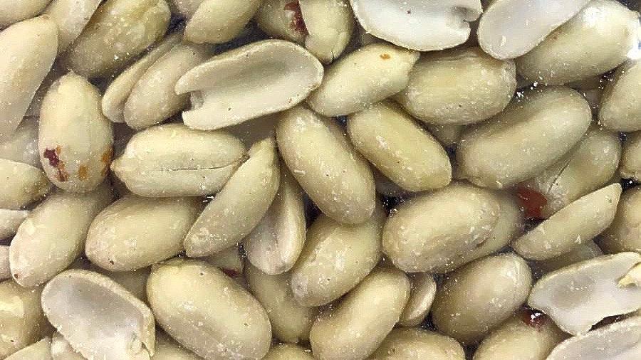 Peeled Peanut 去壳花生