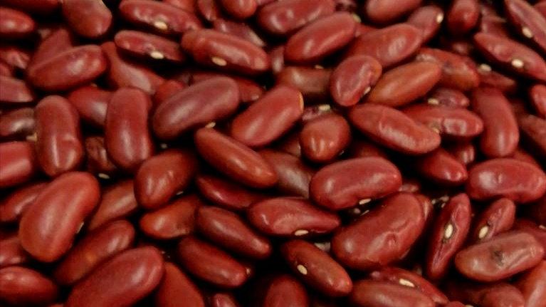 Red Bean (large) 美国腰形大红豆