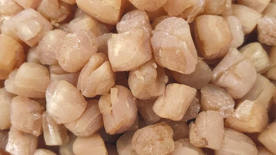 Scallop (Dried, Grade AAAA) 青岛干贝 (AAAA级)