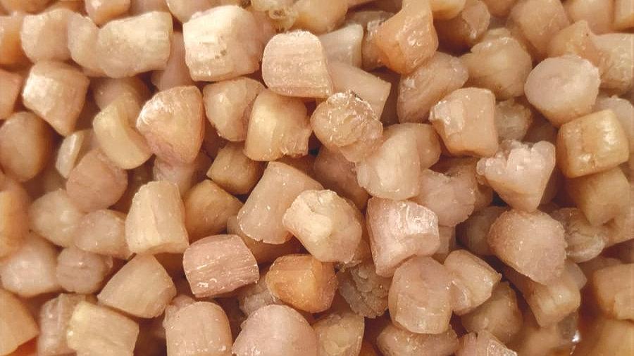 Scallop (Dried, Grade AAA) 青岛干贝 (AAA级)