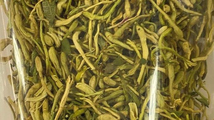 Japanese Honeysuckle 金银花