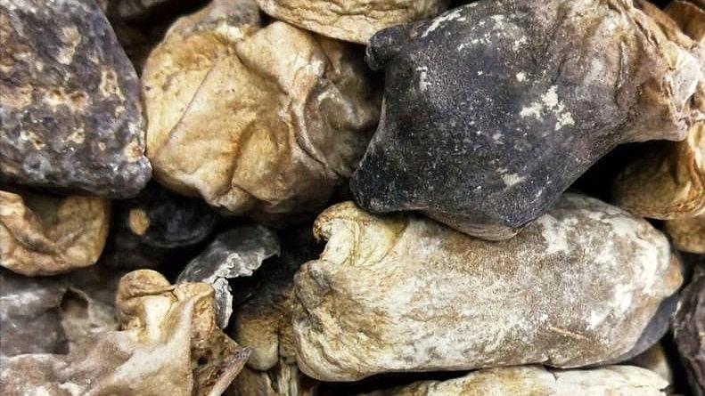 Straw Mushrooms 草菇