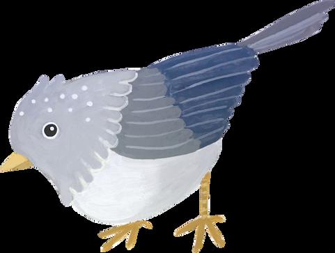 Home decor bird 1