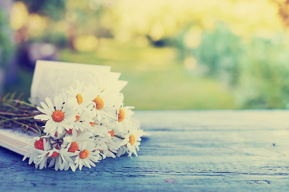 Vintage book with bouquet of daisy flowe