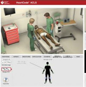 ACLS blended button.jpg