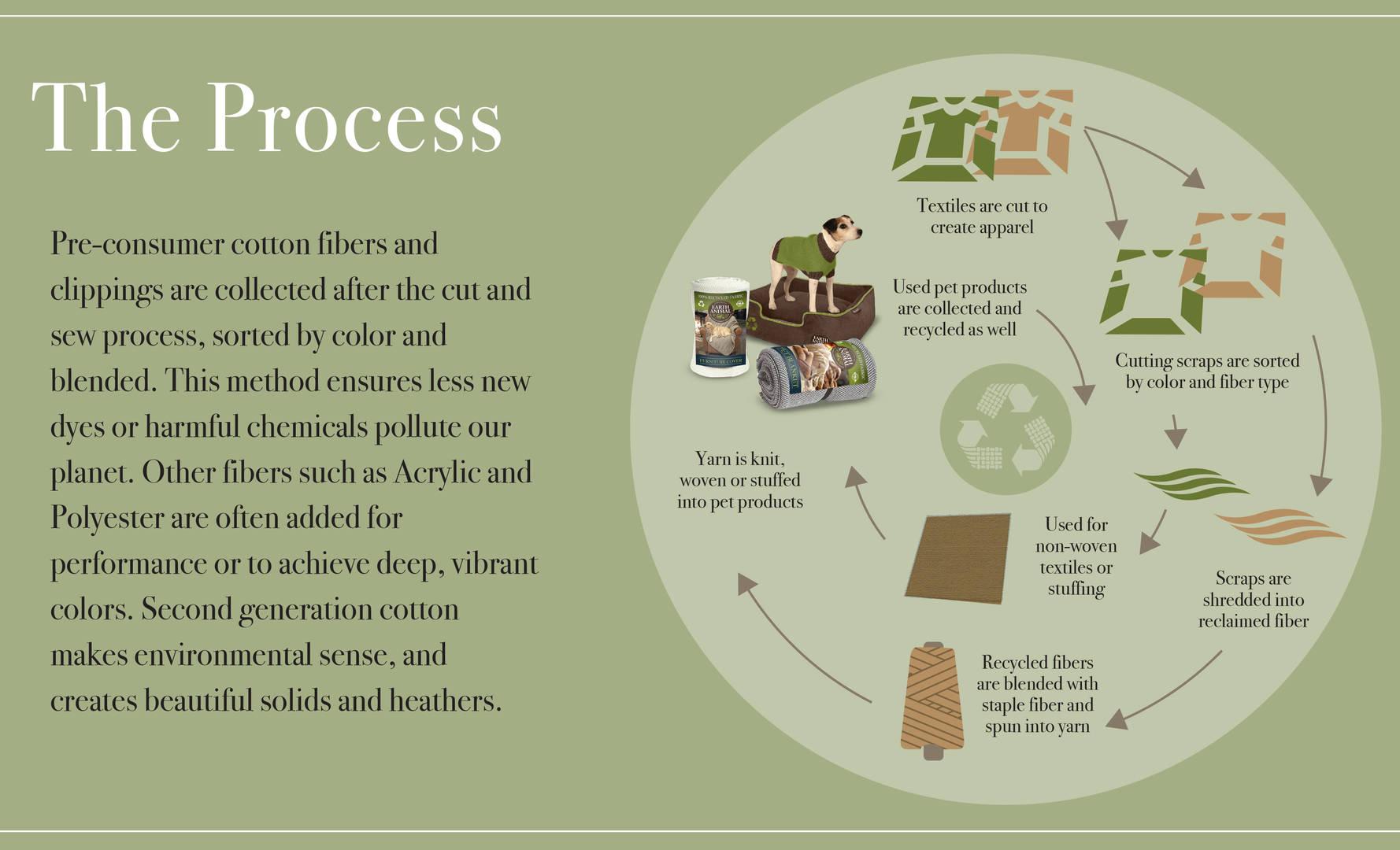 ASI+Earth Animal - presentation 10-19-17