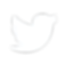 twitter-white-logo-transparent.png
