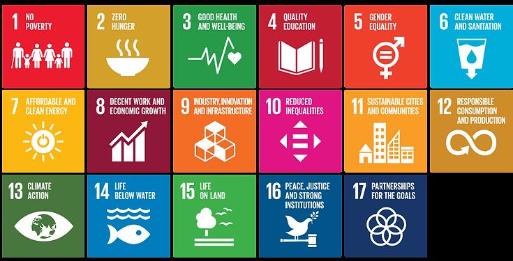 SDG-goals-citypreneur-site-ver.png