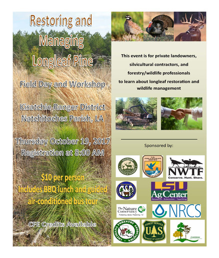 Restoring and Managing Longleaf Pine