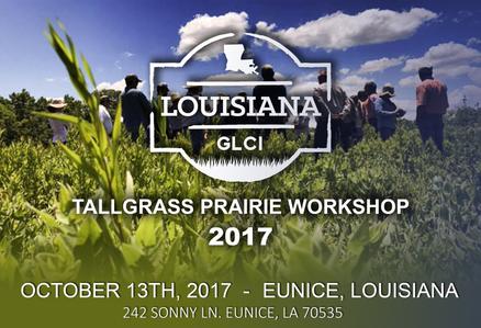 Tallgrass Prairie Workshop