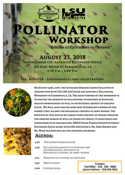 Pollinator Workshop
