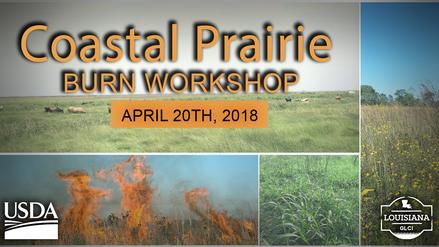 Coastal Prairie Burn Workshop