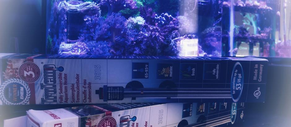 The $27 Purchase That Saved My Tank:  Aquarium Heaters