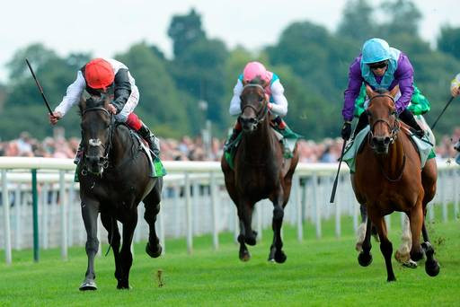 THE EBOR FESTIVAL – MEMORABLE MOMENTS AND ADVICE FOR PUNTERS