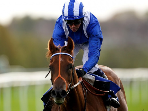 HIGH HOPES FOR HAGGAS HORSE IN INTERNATIONAL