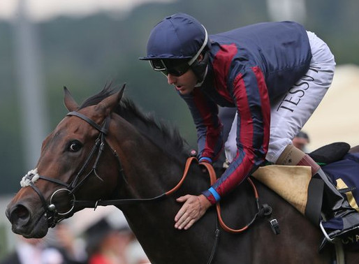 FLAT HORSES TO FOLLOW 2018