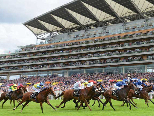 SET TO REIGN SUPREME IN PAVILION STAKES