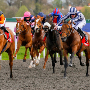 RACE PREVIEW & TIPS (WEDNESDAY)