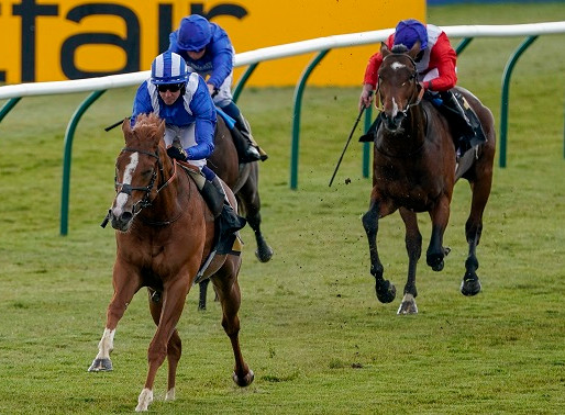 MO PROBLEM IN YORK STAKES
