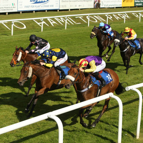 RACE PREVIEW & TIPS (MONDAY)