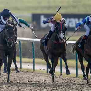 RACE PREVIEW & TIPS (SATURDAY)