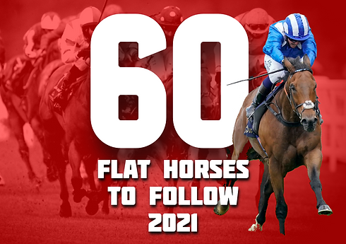 FLAT HORSES TO FOLLOW COVER.png