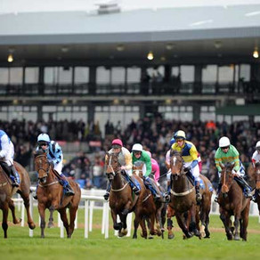 RACE PREVIEW & TIPS (FRIDAY)