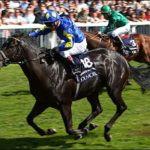Kingsgate Native Claims Victory