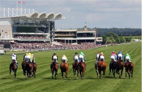 WHO'S SET TO CELEBRATE AT NEWMARKET?