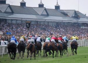 See our Exclusive Selection in the 14:00 at Musselburgh today.