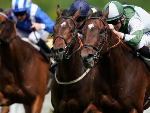 BON SHOULD HAVE APPETITE FOR ALL WEATHER WIN