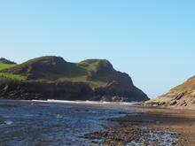 Watermouth Beach With Costal Path.JPG