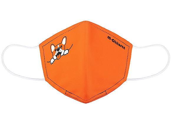 M-Chitosan Doggy Edition
