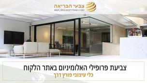 צביעת וטרינת אלומיניום בדירת גן בתל אביב