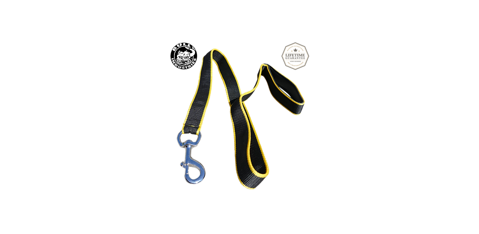 Dog Leash Nylon