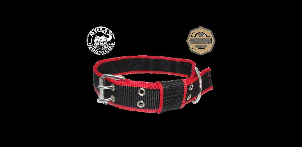 Nylon Dog Collar Red & Black