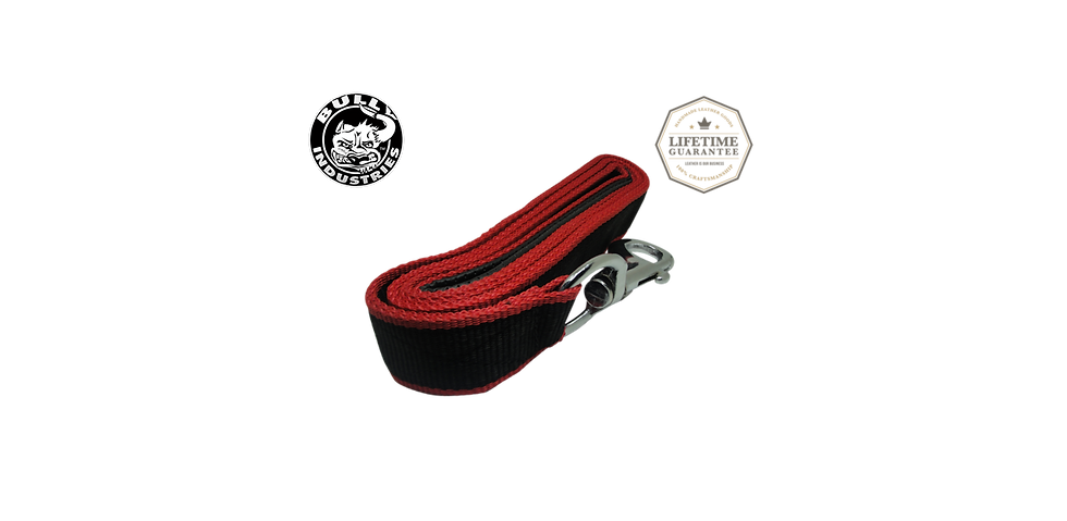 Dog Leash Nylon Black & Red