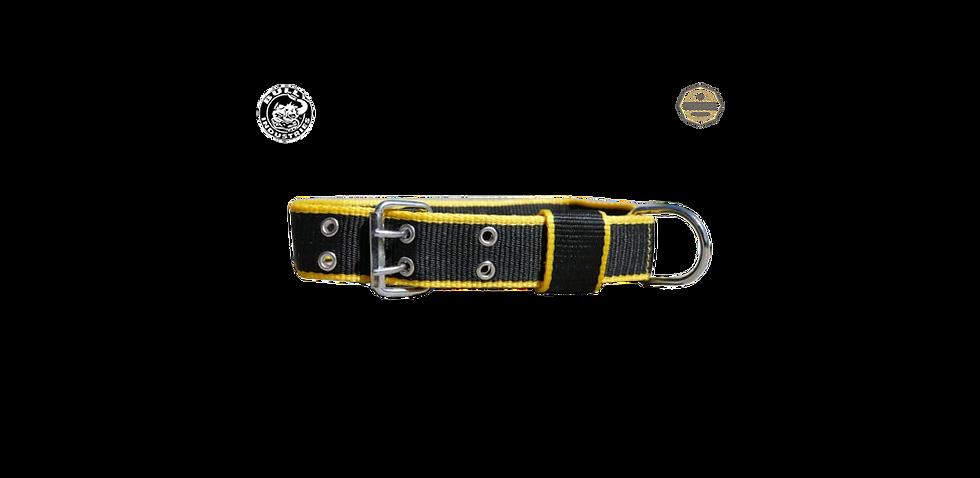 Nylon Dog Collar Yellow & Black