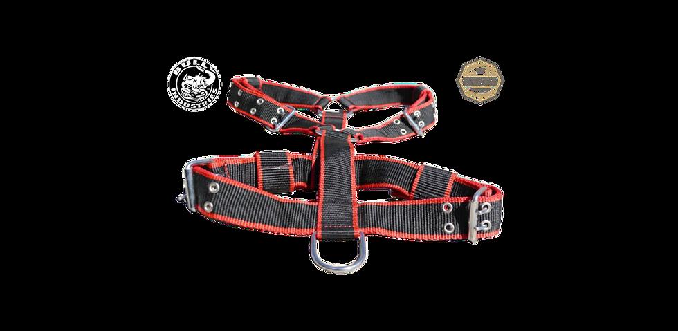 Black & Red Nylon Harness