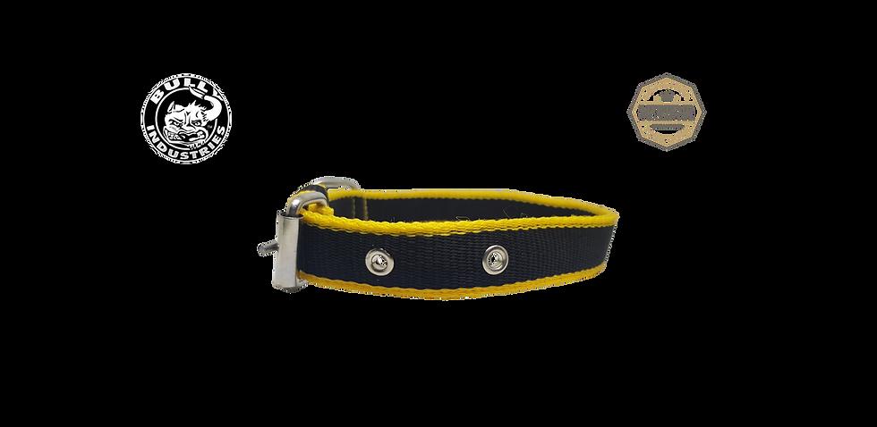 Nylon Dog Collar Slim Jim