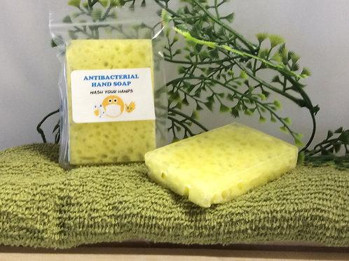 Antibacterial Hand Sponge Soap